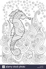 hand drawn sketch of seahorse under the sea in zentangle inspired