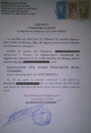 immatriculation chambre de commerce eregulations niger