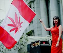 Outside Flag Jodie Emery Wife Of Jailed Pot Activist Marc Emery Waves A