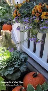 15 best fall window box ideas images on pinterest flowers