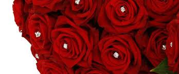 wedding flowers sheffield dramatic 100
