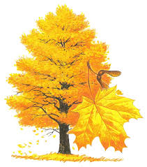 Symbolism Of A Tree by State Symbols