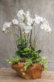 large white orchid arrangement realistic orchids set in white