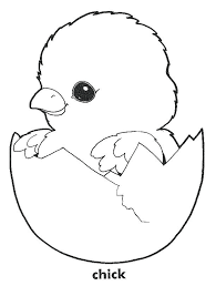 coloring page of a chicken chicken coloring page chicken coloring pages chicken little pictures