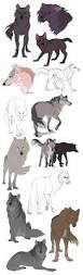 the 25 best animal drawings ideas on pinterest nature paintings