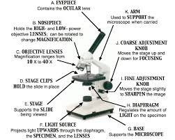 free microscope parts worksheet google docs