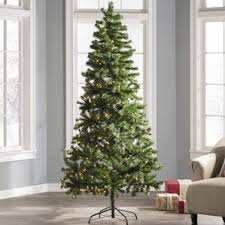 12 foot tree wayfair