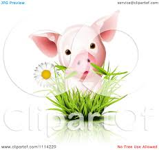 royalty free rf clipart illustration of an adorable curious pig