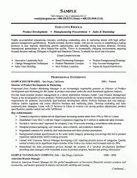 Data Analyst Resume Examples by Financial Analyst Resume Example Business Analyst Resume Summary
