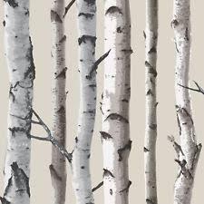 Natural Beige Cream FD Birch Tree Forest Woods Fine Decor