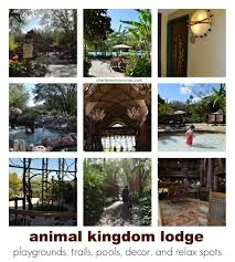 animal kingdom lodge review charlene chronicles