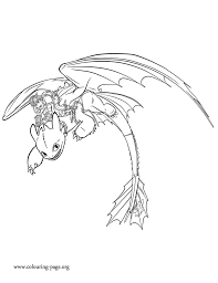hiccup friend toothless flying