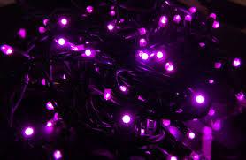 Chili Lights Pink String Lights On Winlights Com Deluxe Interior Lighting Design
