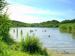 Hatchmere wild swimming outdoors in rivers lakes and the sea