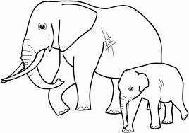coloriageelephant  Imprimer Coloriage