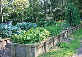 Backyard Planter Box Ideas Vegetable Garden Planter Boxes Ideas Inventive Garden Planter