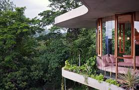 low impact planchonella house meanders through queensland s lush planchonella house jesse bennett australia queensland tropical rainforest natural lighting