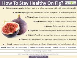 15 best benefits of figs or anjeer organic facts