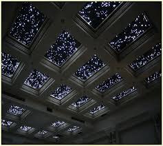 Fibre Optic Lights For Ceilings Ceiling Lights Fiber Optic Fibre Optic Lighting Ceiling Fibre