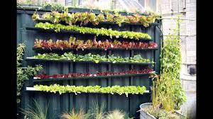 Urban Vegetable Garden by Stunning Vertical Vegetable Gardening Youtube