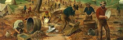 mining for riches a brief history of gold rushes in australia
