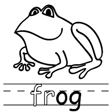 one single frog coloring page free printable coloring pages