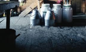sewer inspections for older homes