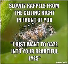 Spider Meme - cool misunderstood spider meme testing testing