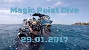 Dive Flag Australia Scuba Diving Magic Point Sydney 29 01 17 Youtube