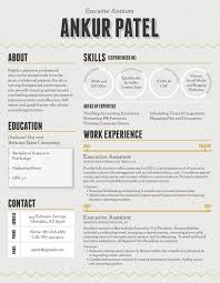 Css Resume How To Make An Infographic Resume