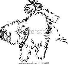 dog vector stock images royalty free images u0026 vectors