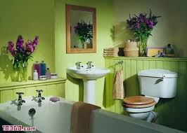 lime green bathroom ideas best 25 lime green bathrooms ideas on green painted