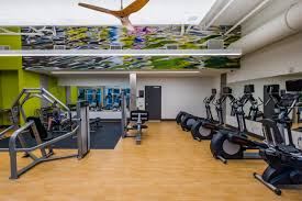 Gym Wall Murals Wall Graphics