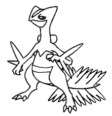coloring pages pokemon sceptile drawings pokemon