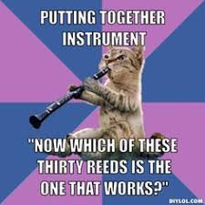 Clarinet Meme - clarinet cat amirite oh spit how i ve learned to tolerate you