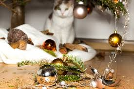 5 ways to save your christmas tree from cat attacks love ferplast