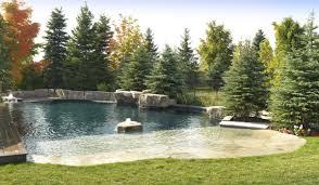 let u0027s go to the beach u2026in the backyard betz pools