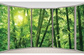 wall murals view of bamboo forest wallpapers mural ellipse window view bamboo forest
