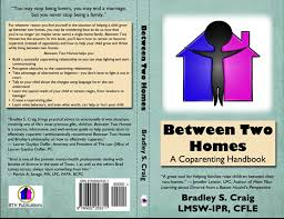two homes between two homes a coparenting handbook
