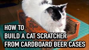 Cardboard Cat Scratcher House How To Build A Cat Scratcher From Cardboard Beer Cases Youtube