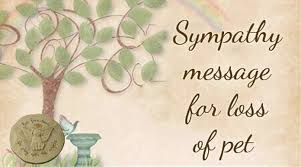sympathy for loss of dog sympathy message for loss of pet sle condolences for loss of