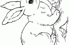 tag cute baby bunny coloring pages cute chibi bunny coloring