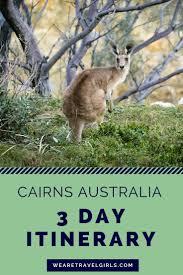 best 25 australia cairns ideas on pinterest queensland