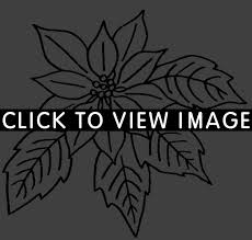 christmas flower coloring pages coloring pages flowers and leaves