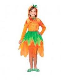 Pumpkin Costume Halloween Coolest Cat Hat Costume Costumes Halloween Costumes