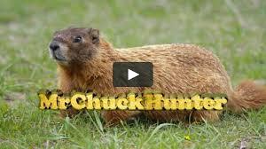 groundhog woodchuck rock chuck hunting w scopecam 2012 on vimeo