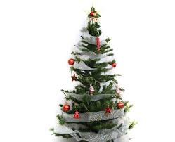 real christmas tree decorating christmas lights decoration