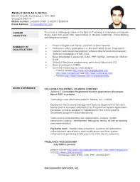 updated resume templates browse free resume template singapore updated cv and work sle
