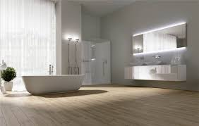 appealing furniture in minimalist bathroom decor with bathub