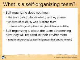 a self organizing team